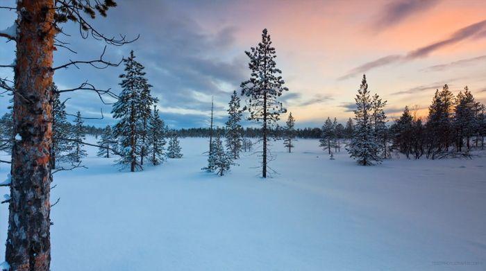 Beautiful Auroras Over Norway