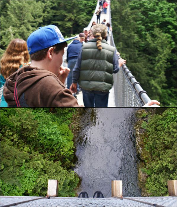 Fascinating Capilano Suspension Bridge (22 pics)