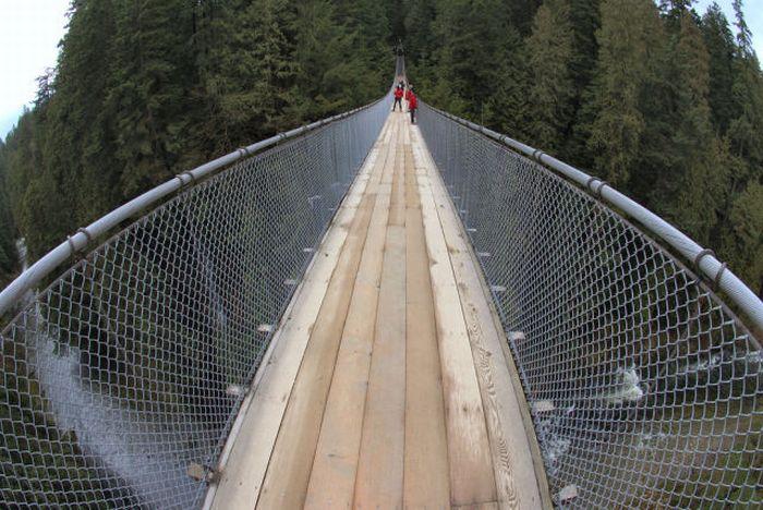 Fascinating Capilano Suspension Bridge (22 pics)