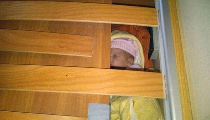 Baby Smugglers (5 pics)