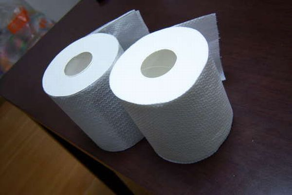 Toilet Paper Roll for the Fools Day (15 pics)
