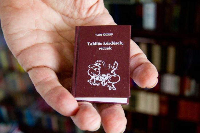 Micro Books as a Hobby (18 pics)