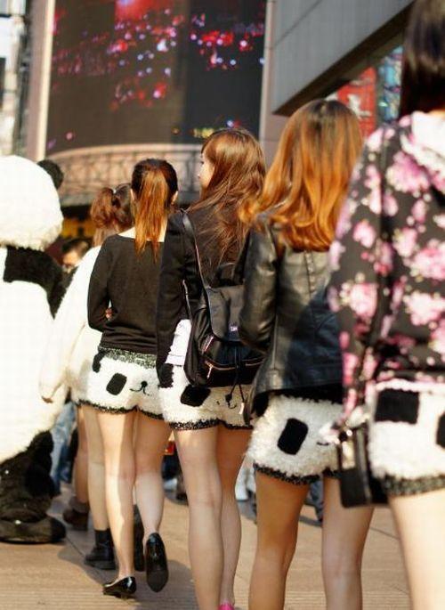 Panda Shorts (17 pics)