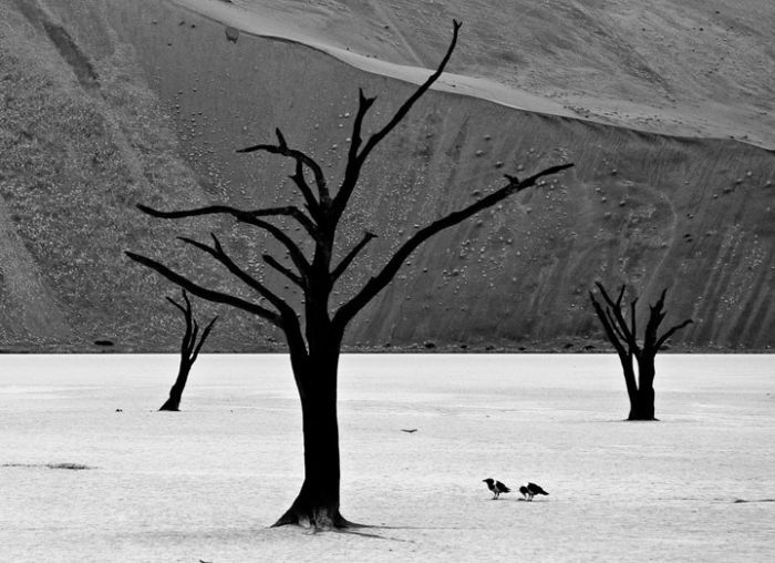 Beautiful Nature by Gorazd Golob (19 pics)