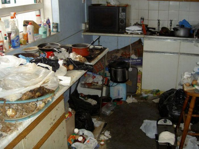 The Filthiest Kitchen of he World (5 pics)