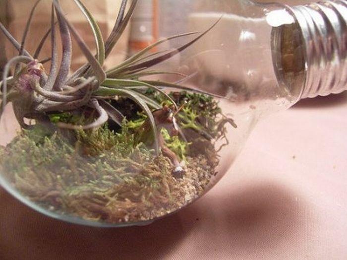 Awesome Art Inside Light Bulbs (17 pics)