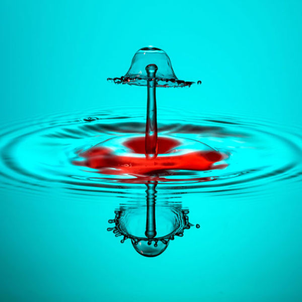 High-Speed Photography of Water Drops (16 pics)