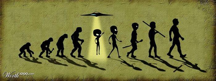 Evolution Pictures (16 pics)