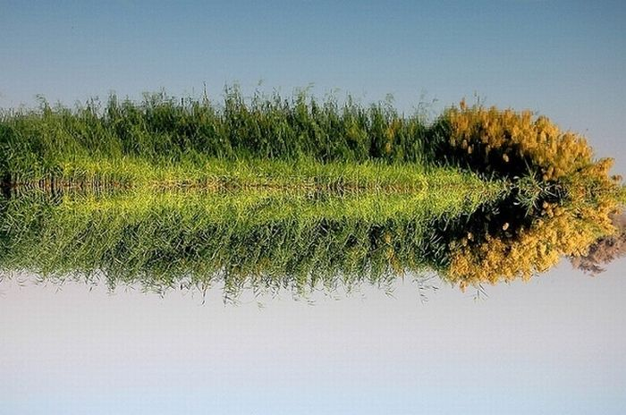 Beautiful Reflections (60 pics)