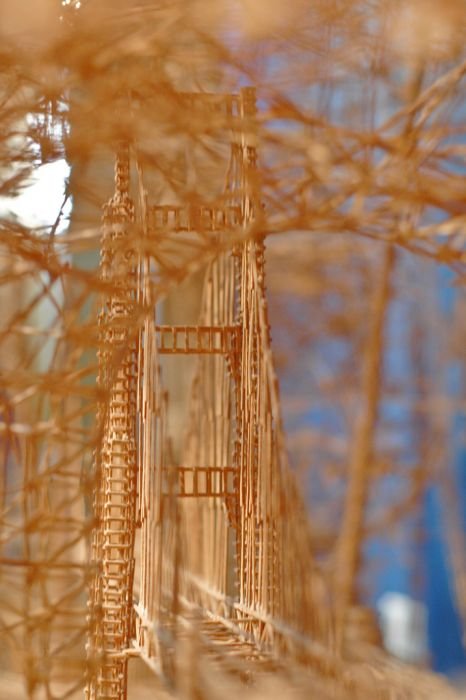 100,000 Toothpicks Sculpture (25 pics + video)