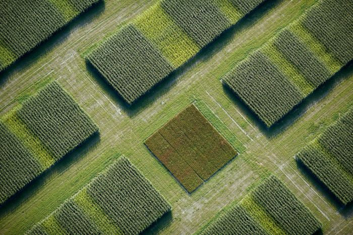 Amazing Aerial Photos (46 pics)