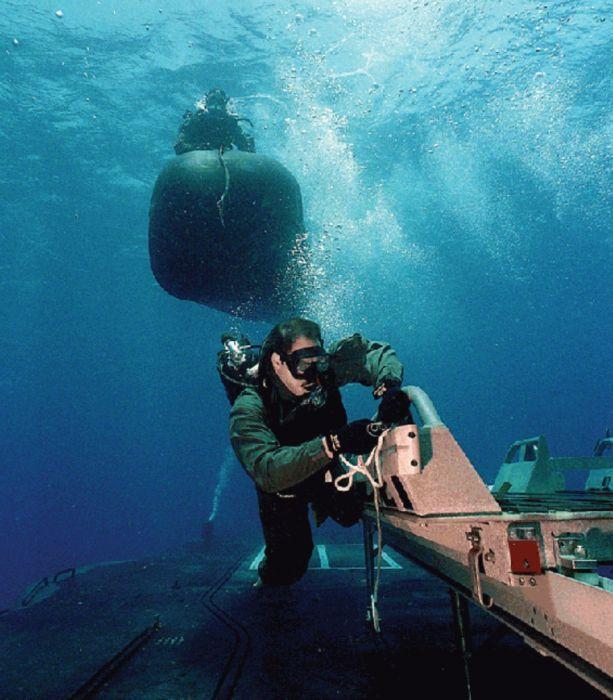 Navy SEALs (33 pics)
