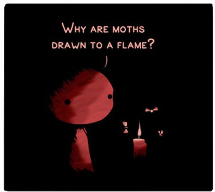Why Are Moths Drawn to a Flame? (5 pics)