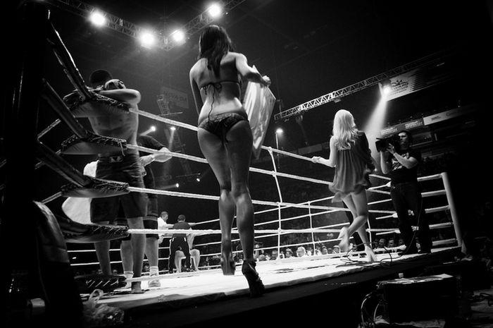 Ring Girls (13 pics)