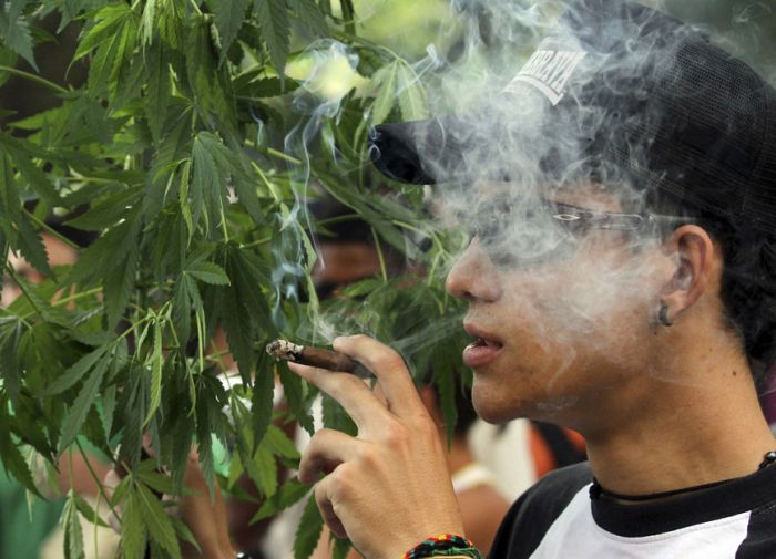 The Global Marijuana March (42 pics)
