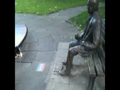 Dog Playing With Statue