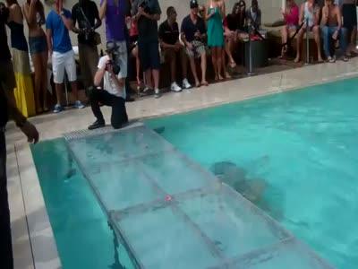 Hot Girl Falls at Bikini Contest