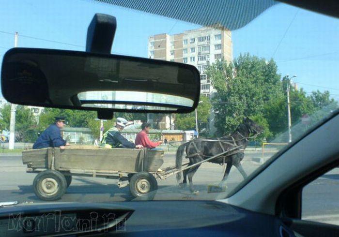 Funny Car Photos from Romania (25 pics)