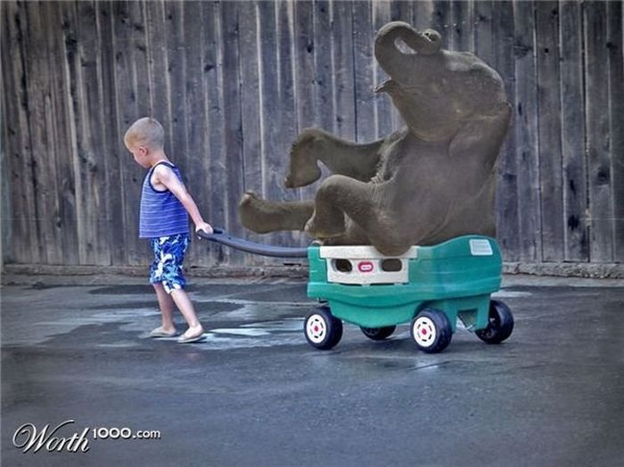 Everything is Possible (33 pics)