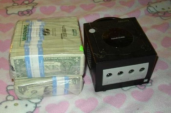 How Much is One Million US Dollars in Cash (13 pics)