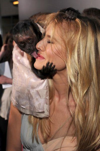 Monkey Kisses Kristen Bell (6 pics)