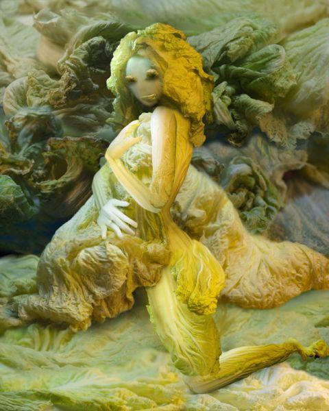 Cabbage Girls (16 pics)