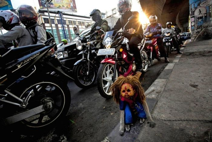 Performing Street Monkeys of Indonesia (16 pics)