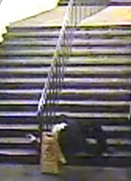 Drunk Man Falls Down the Stairs and Walks Away (8 pics + video)