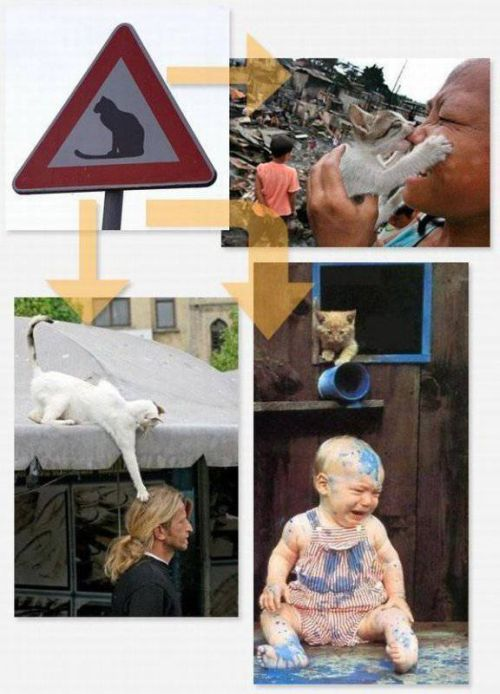 Weird Signs and Their Photo Explanations (14 pics)