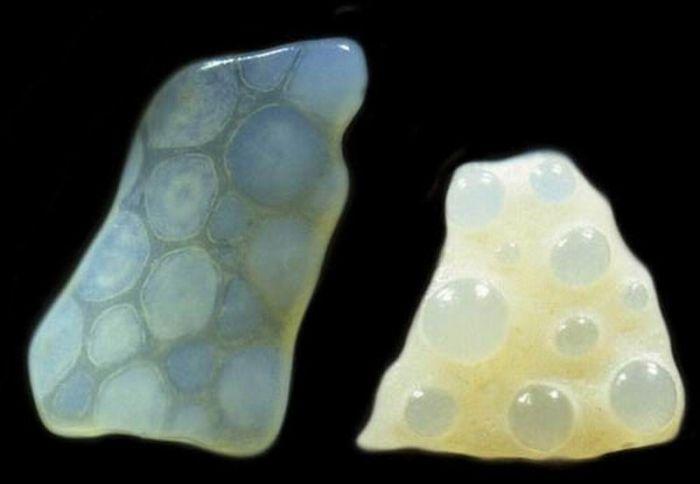 Sand under a Microscope (11 pics)