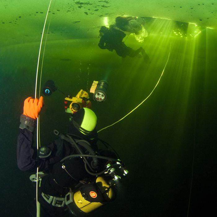Underwater World of the White Sea (40 pics)