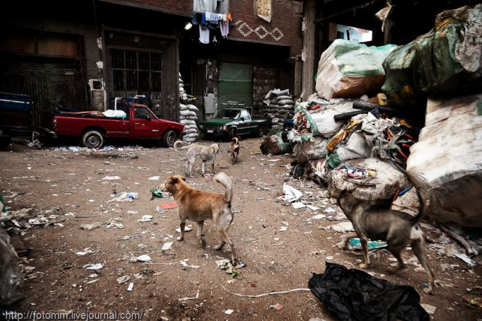 Garbage City of Cairo. Part 2 (45 pics)
