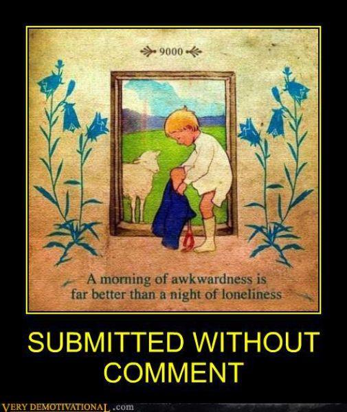 Funny Demotivational Posters (46 pics)