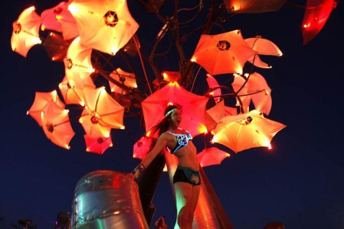Electric Daisy Carnival 2011 (23 pics)