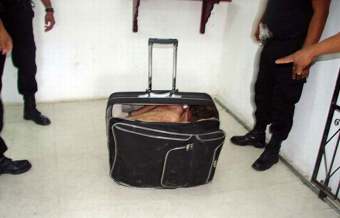 Riddle of the Day. What's Inside the Suitcase? (4 pics)