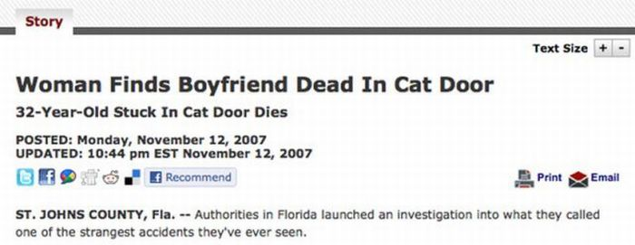 Headlines from Florida (45 pics)
