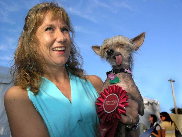 World's Ugliest Dog 2011 (18 pics)