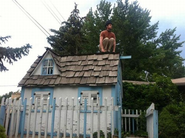 Owling is a New Trend (15 pics)