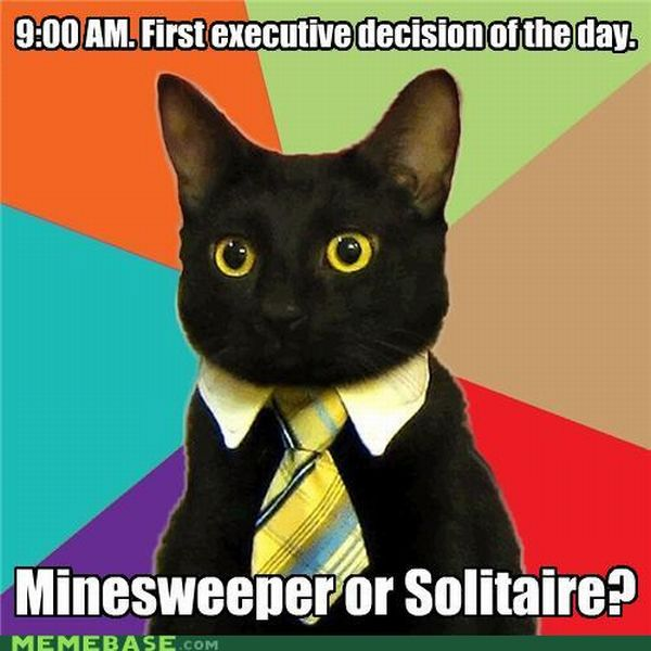 Business Cat (41 pics)