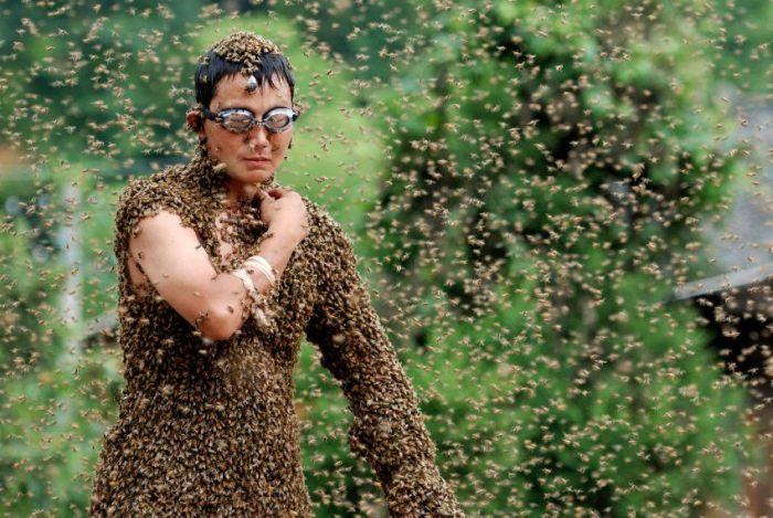 Bee Bearding (6 pics)