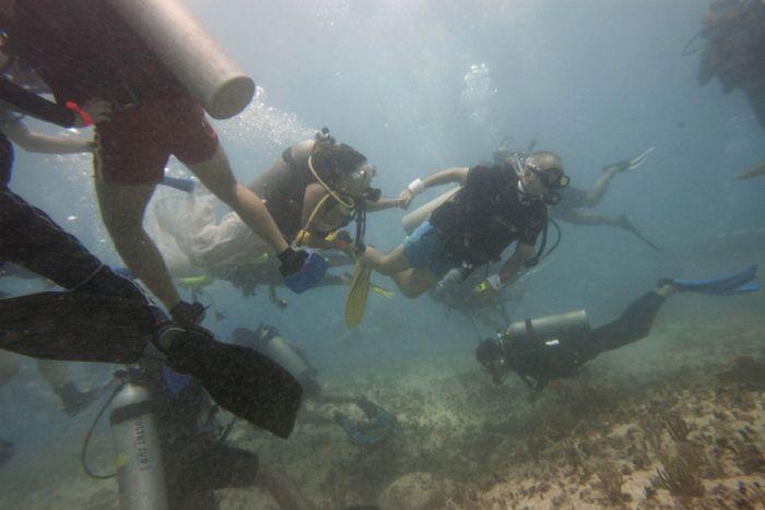 Underwater Wedding (7 pics)