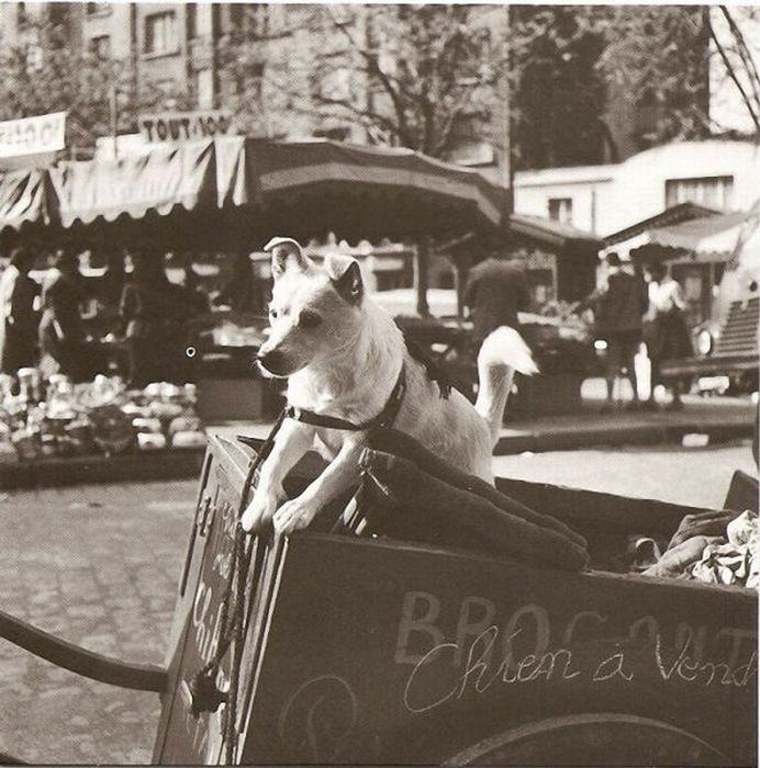 Photos of Old Paris (30 pics)