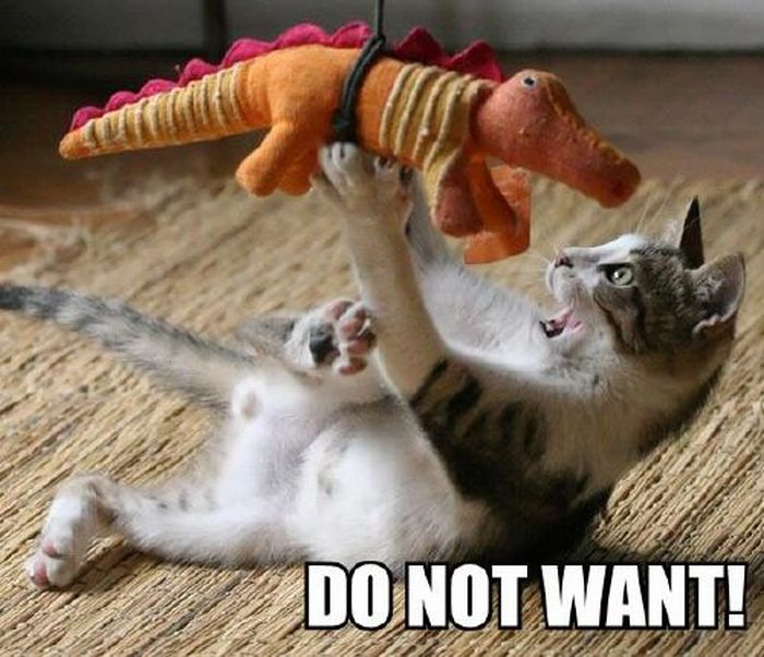 Do Not Want (30 pics)