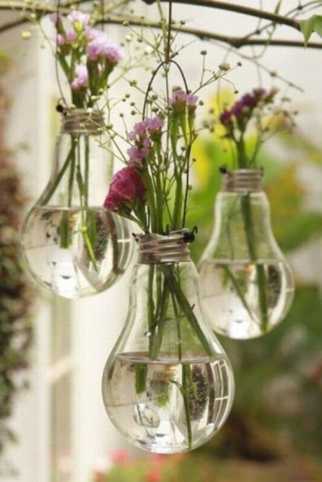 DIY Planter Bulbs (5 pics)