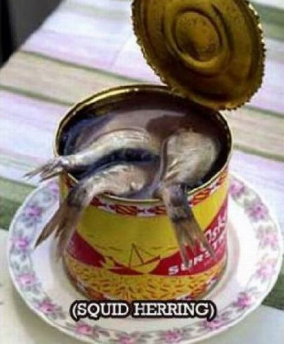 WTF Canned Food (22 pics)