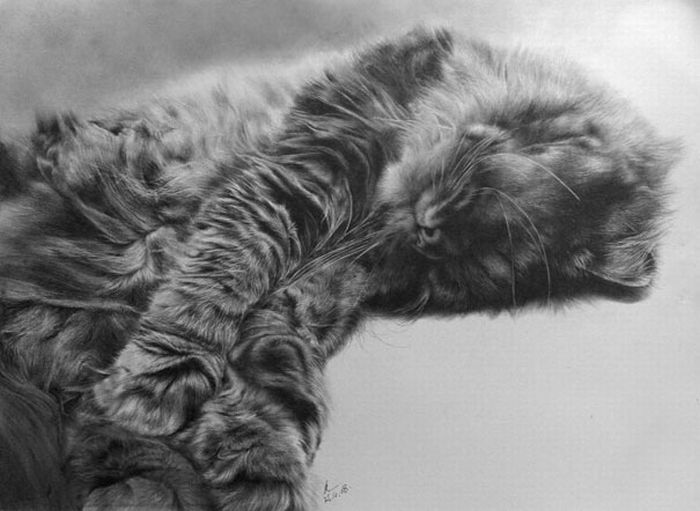 Pencil Drawings by Paul Lung (27 pics)