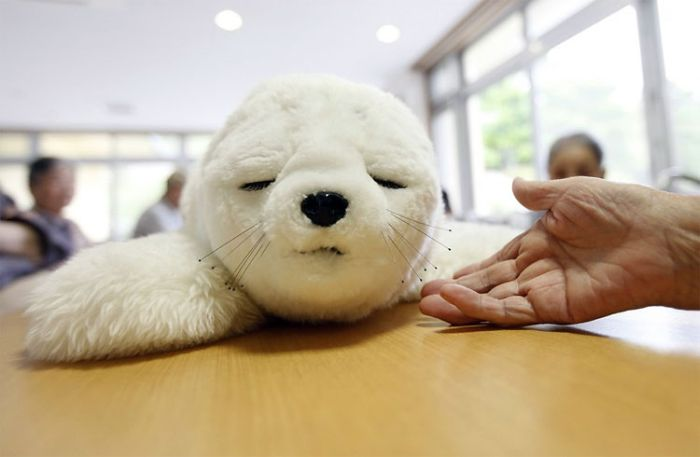 Cute Robot Seals (6 pics)