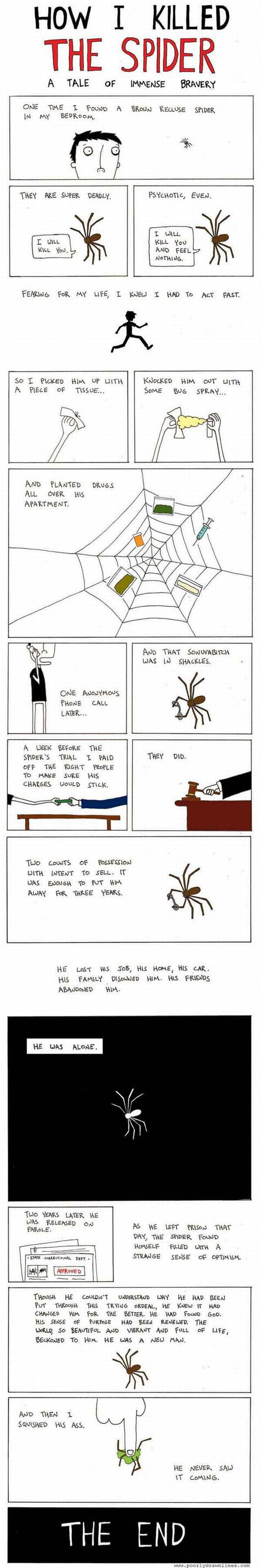 How I Killed the Spider (1 pic)