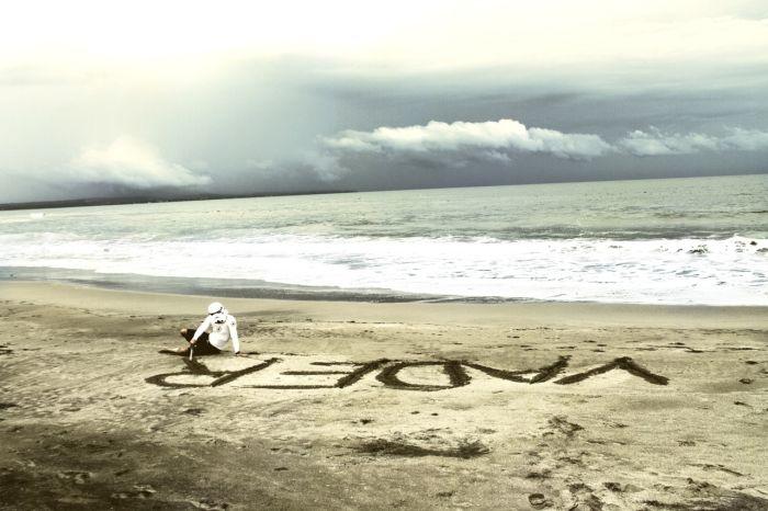 Surfing Trooper (33 pics)