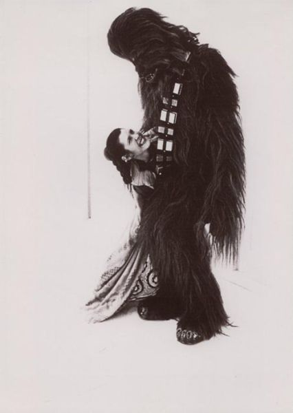 Chewbacca and Leia Having an Affair (9 pics)